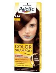 Palette 244 Czekoladowy Brąz - szampon koloryzujący