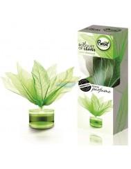 Brait Bouquet of Leaves Green Diamond Bukiet Pachnących Listków Odświeżacz Powietrza 50 ml