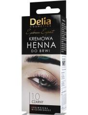 Delia Henna do Brwi Kremowa 1.0 Czarny 1 szt