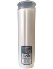 Wkład do Zniczy Olejowy Ignis (czas palenia ~ 75 h) (17,5 x 5 cm) 1 szt