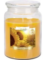 Aura Świeca Zapachowa w Szkle z Wieczkiem Duża Słoneczniki (~100 h) 1 szt